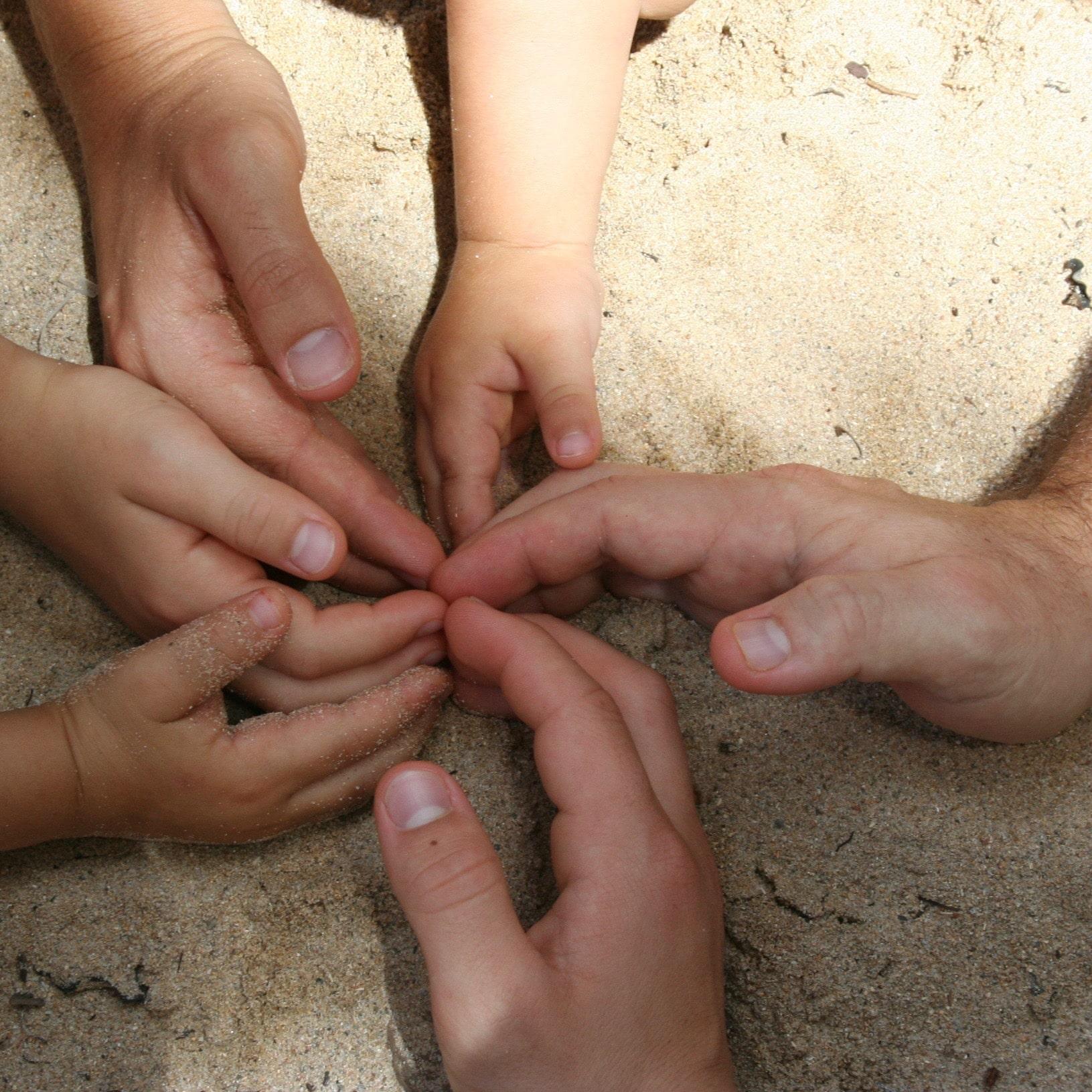 Les 6 doigts de la main